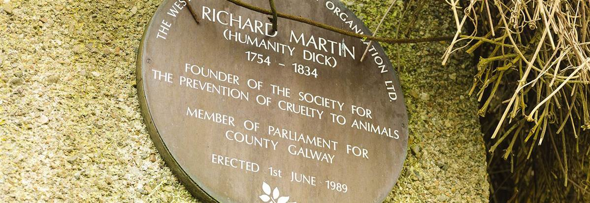 Ballynahinch Plaque to Humanity Dick